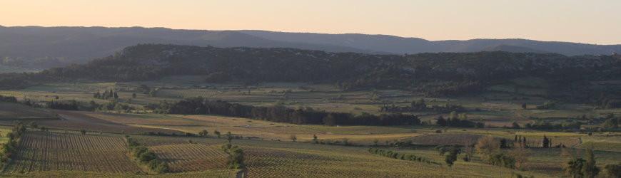 Cotes du Roussillon