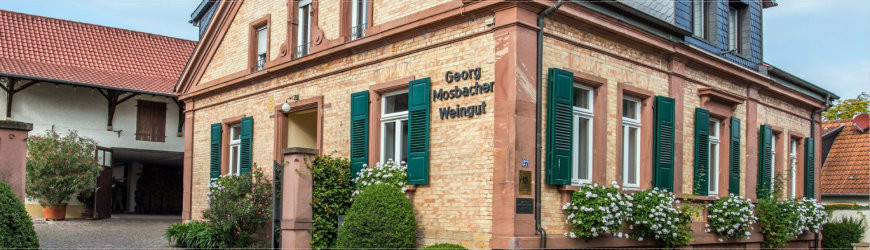 Weingut Mosbacher